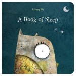 A Book of Sleep, An Owls Journey