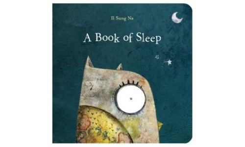 A Book of Sleep, An Owls Journey