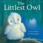 The Littlest Owl Book Childrens Story Book