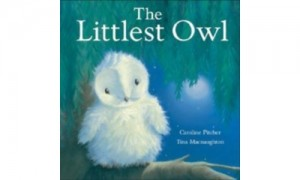 Owl-Books-The-Littlest-Owl.500