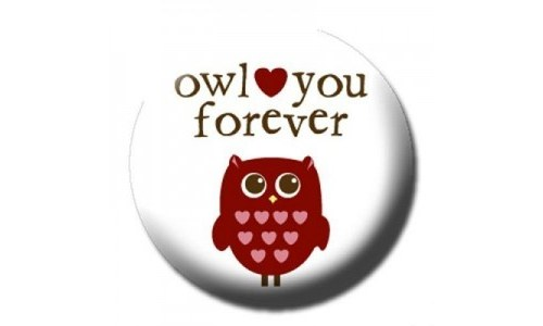 Owl Love You Forever Pinback Owl Button