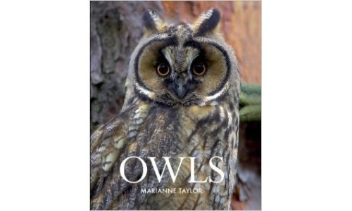 Owls by Marianne Taylor Owl Book