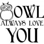 Owl Always Love You Decal Sticker