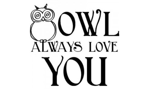 Owl Always Love You Decal Sticker