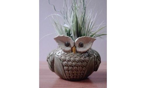 Ceramic Wise Old Owl Planter or Vase