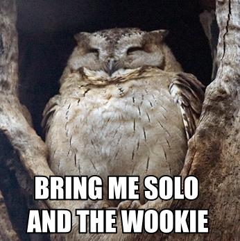 Star Wars Owl Meme